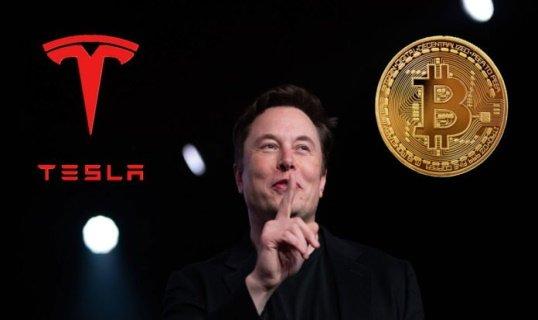 «Tesla» приостановила оплату электрокаров ВТС